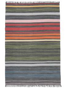 Rainbow Stripe - Grau Teppich  140X200 Echter Moderner Handgewebter Dunkelgrau/Olivgrün (Baumwolle, Indien)