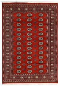 Pakistan Buchara 2Ply Teppich  166X240 Echter Orientalischer Handgeknüpfter Schwartz/Dunkelrot/Dunkelbraun (Wolle, Pakistan)
