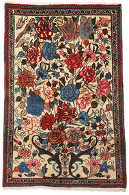 Bachtiar Collectible Teppich  100X154 Echter Orientalischer Handgeknüpfter Dunkelbraun/Beige (Wolle, Persien/Iran)